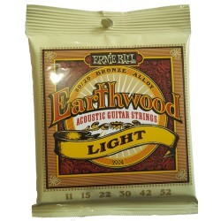 Ernie Ball Earthwood