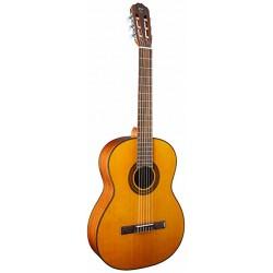 Takamine Classic Guitar