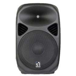 """In Audio 15"""" Passive Speaker"""